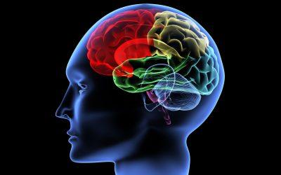 Contoh Soalan Ujian Psikometrik SPA